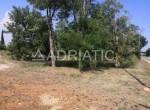 gradevinsko-zemljiste-loborika-1700-m2-slika-119450500.jpg.800x600_q85